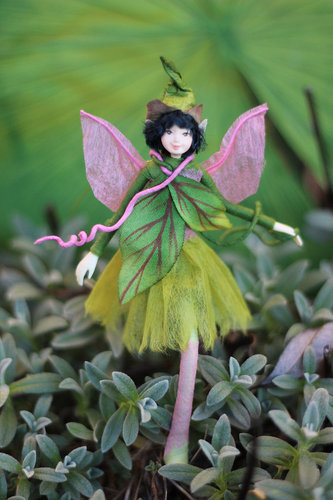 meadow fairy
